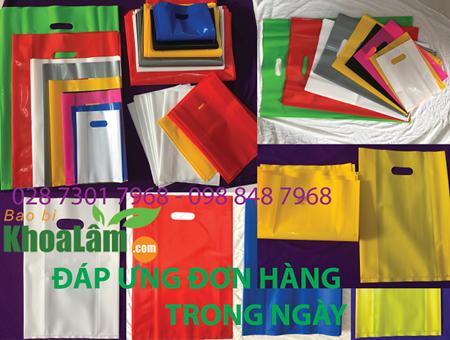 Hình ảnh nhóm sản phẩm Túi Hột Xoài PE,HD,PP
